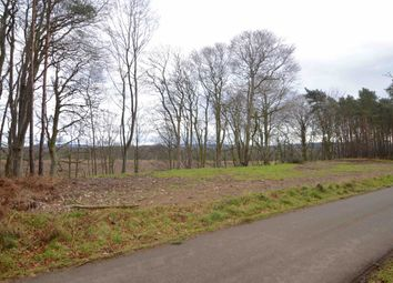 Thumbnail Land for sale in Lunan Woods, Garmouth, Morayshire