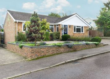 Thumbnail 4 bed bungalow for sale in Loompits Way, Saffron Walden