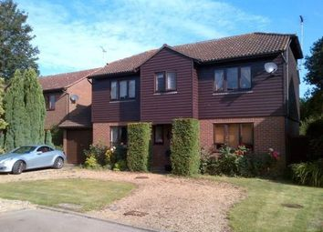Thumbnail 4 bed detached house to rent in Harlings, Hertford Heath, Hertford