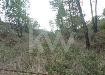 Thumbnail Land for sale in 8100 Alte, Portugal
