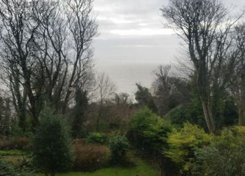 Thumbnail Detached house for sale in Ventnor, Isle Of Wight, .