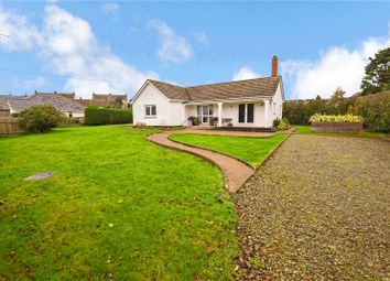 Thumbnail 2 bed bungalow for sale in Trelights, Port Isaac