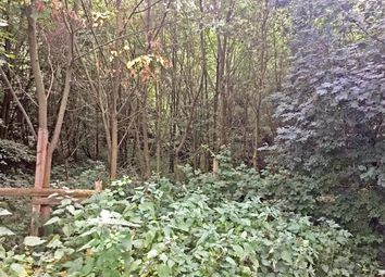 Land for sale in Willow Walk, Culverstone, Meopham, Kent DA13