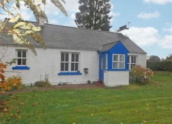 Thumbnail 3 bed detached bungalow to rent in Milton Lane, Finavon, Forfar