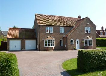 Thumbnail 4 bed detached house for sale in The Drive, Waltham, Grimsby