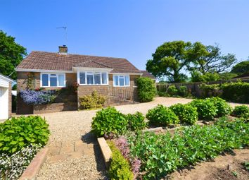Thumbnail 3 bed detached bungalow for sale in Chideock, Bridport