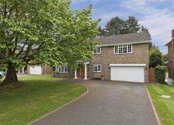 Thumbnail 6 bedroom detached house to rent in Pine Walk, Cobham, Surrey
