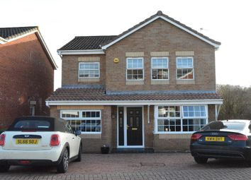 Thumbnail 4 bedroom detached house for sale in Ingram Place, Maddiston, Falkirk