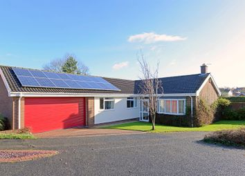 Thumbnail 4 bed bungalow for sale in Rowton Close, Wellington, Telford
