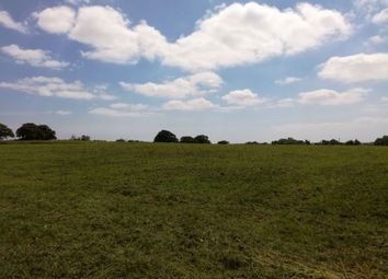 Thumbnail Property for sale in Emsworth Common Road, Emsworth