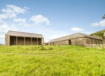 Thumbnail Land for sale in Wrytree Farm, Greenhead, Near Haltwhistle, Northumberland