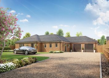 Thumbnail 3 bed detached bungalow for sale in Worlds End Road, Tydd St. Mary, Wisbech