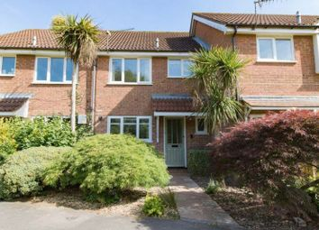 Thumbnail 3 bed terraced house to rent in Winterbourne Walk, Frimley, Camberley