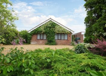 Thumbnail 3 bed detached bungalow for sale in Church Road, Yelverton, Norwich