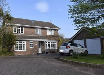Thumbnail 4 bedroom detached house for sale in The Orchard, Newton, Swansea
