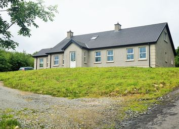 Thumbnail 4 bed detached bungalow for sale in Letter Road, Belleek, Enniskillen