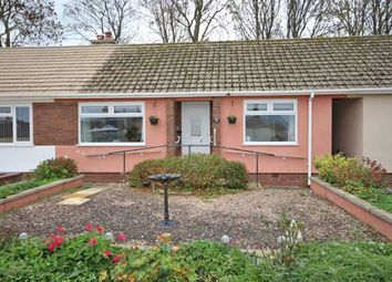 Thumbnail 2 bed terraced bungalow for sale in Peaseditch, St Marys, Brixham