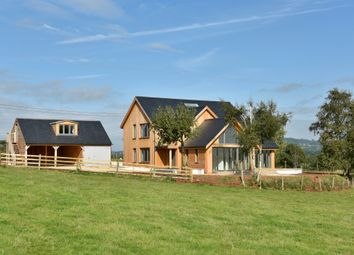 Thumbnail 4 bedroom country house for sale in Payhembury, Honiton