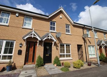 Thumbnail 3 bed terraced house to rent in Mornington Lane, Lisburn