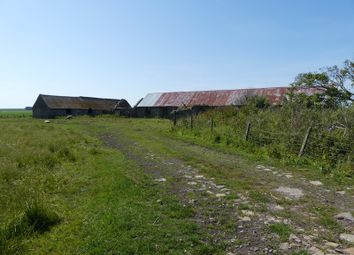 Thumbnail Land for sale in Burn Road, Scarfskerry