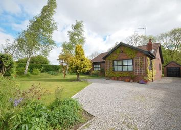 Thumbnail 3 bedroom bungalow to rent in Birches, West Lutton, Malton
