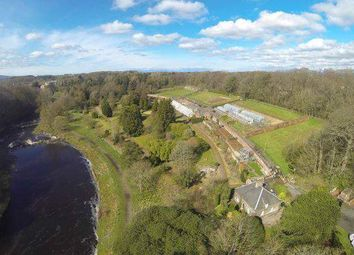 Thumbnail Land for sale in The Walled Garden, Auchincruive, By Ayr