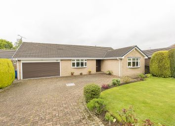 Thumbnail 4 bed detached bungalow for sale in Brookside Bar, Brookside, Chesterfield