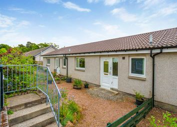 Thumbnail 1 bed bungalow to rent in Grahame Terrace, Gilmerton