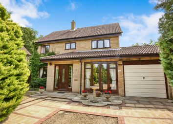 Thumbnail 4 bed detached house for sale in Old Hall Close, Trowse, Norwich