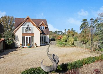 Thumbnail 4 bed detached house for sale in Wellhead Drove, Westbury