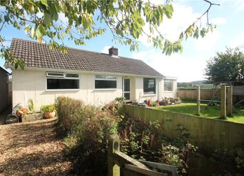 Thumbnail 3 bed detached bungalow for sale in Dennis Lane, Ludwell, Shaftesbury, Wiltshire