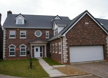 Thumbnail 5 bed detached house to rent in Rowton Rise, Standish, Wigan