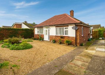 2 bed detached bungalow for sale in Harvey Street, Watton, Thetford, Norfolk IP25