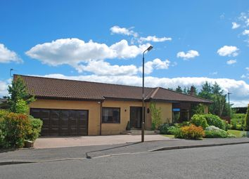 Thumbnail 5 bed detached bungalow for sale in Millar Place, Stenhousemuir