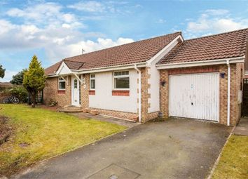 Thumbnail 3 bed detached bungalow for sale in Gates Drive, Heathhall, Dumfries