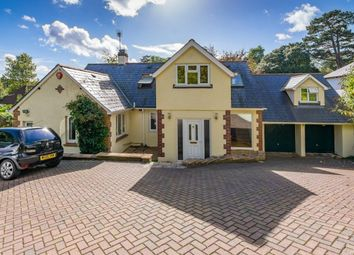 Thumbnail 4 bed detached house for sale in Daccabridge Road, Kingskerswell, Newton Abbot