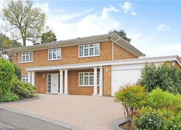 Thumbnail 5 bed detached house to rent in Shalbourne Rise, Camberley, Surrey