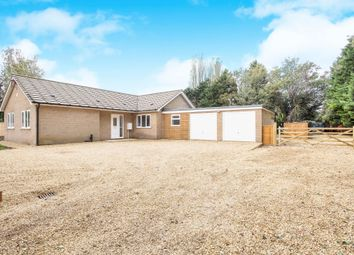 Thumbnail 4 bed bungalow to rent in Smeeth Road, Marshland St. James, Wisbech