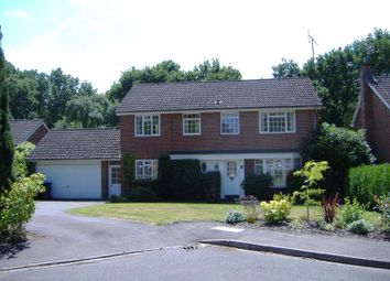 Thumbnail 4 bed detached house to rent in Dean Close, Pyrford, Woking, Surrey