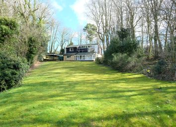 Thumbnail 6 bed detached house for sale in The Croft, Old Costessey, Norwich, Norfolk