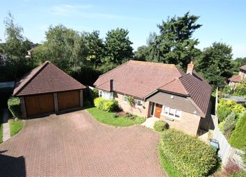 Thumbnail 3 bed detached bungalow for sale in West Meads, Horley, Surrey
