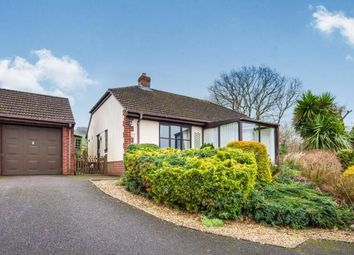 Thumbnail 2 bed bungalow for sale in Musbury, Axminster