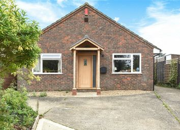Thumbnail 3 bed detached bungalow for sale in New Farm Road, Alresford