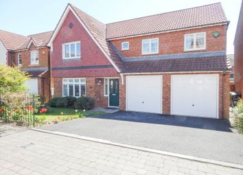 Thumbnail 4 bed detached house to rent in Aylesford Mews, Sunderland