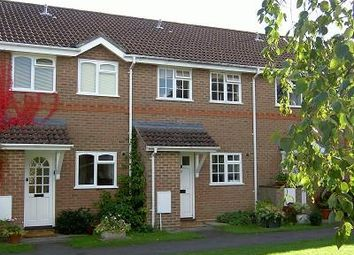 Thumbnail 2 bed terraced house to rent in Lightwater, Surrey
