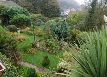 Thumbnail Property for sale in Boxers Lane, Niton, Ventnor, Isle Of Wight.