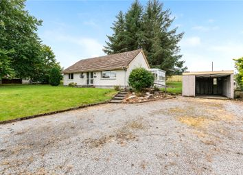 Thumbnail 3 bed detached bungalow for sale in Ardgay