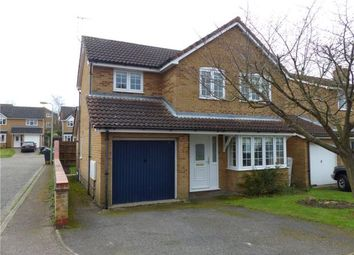 Thumbnail 4 bed detached house to rent in Yeoman Way, Hadleigh, Ipswich