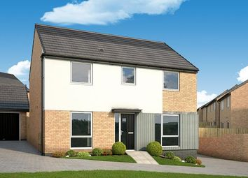 "Thumbnail 4 bed property for sale in ""Camellia At Chase Farm, Gedling"" at Arnold Lane, Gedling, Nottingham"