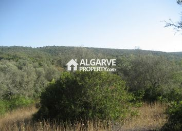 Thumbnail Land for sale in Goldra, Loulé (São Sebastião), Loulé Algarve